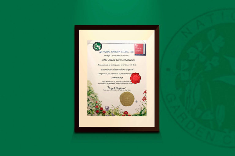 Reconocimiento National Garden Clubs, Inc Lilian Feres