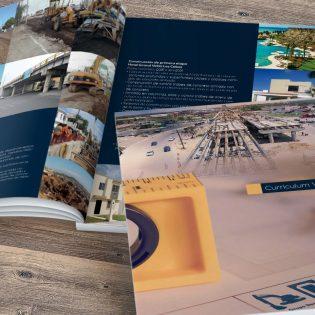 Diseño Currículum Empresarial Grupo Desarrollo de Tamaulipas