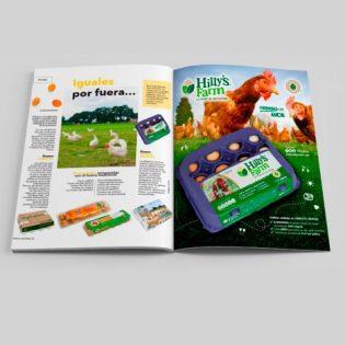 Diseño de Publicidad para Hillys Farm Huevos de Libre Pastoreo San Pedro Garza Garcia y Tampico